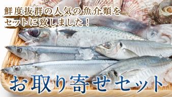 お取り寄せセット 人気の新鮮な魚介類をセットにしました